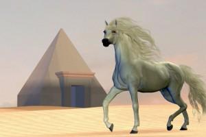 Pferd und Kubus