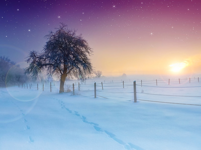 Traumdeutung Schnee