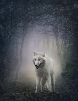 Mystischer Wolf
