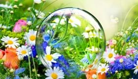 Wahrsager Glaskugel