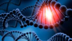 DNA-Forschung, Wissenschaft