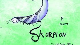 Skorpion Kind