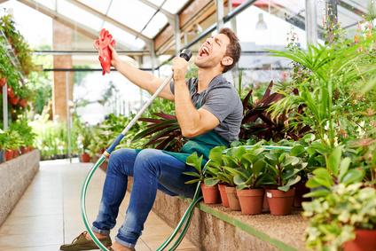Gärtner singt für Freude im Gewächshaus
