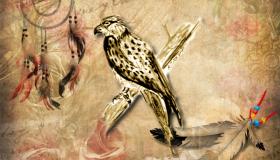 Indianer Sternzeichen Falke