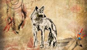 Indianer Horoskop Wolf