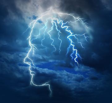 Gehirn und die Seele