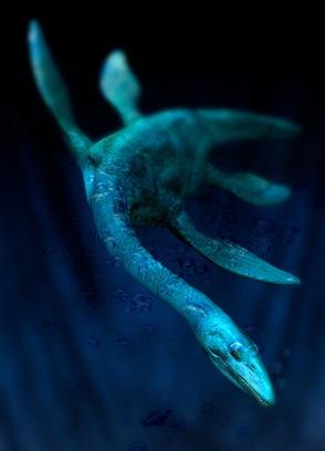 Seeschlange Nessy