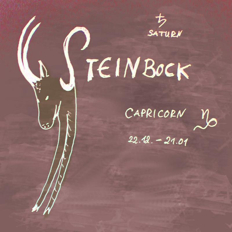 Steinbock Kind