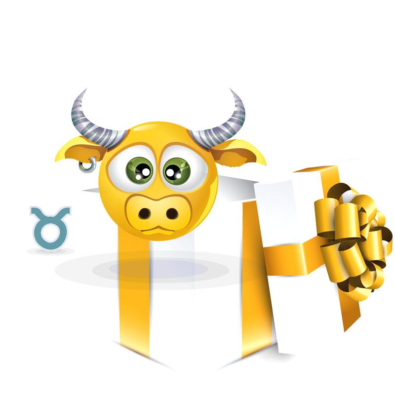 Geschenke für Stier