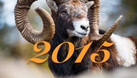 Jahreshoroskop 2015